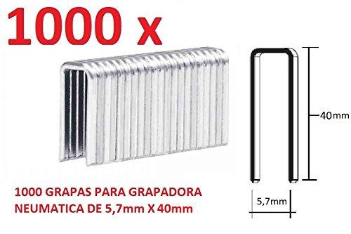 Enviorapido PDT40D3 Lot de 1000 Agrafes de 5, 7 mm x 40 mm pour agrafeuse pneumatique Parkside
