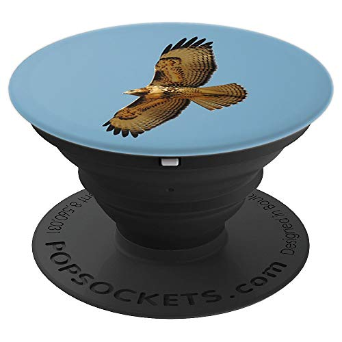 Red-Tailed Hawk In Flight - PopSockets Grip and Stand for Phones and Tablets