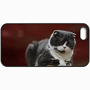 Fashion Unique Design Protective Cellphone Back Cover Case For iPhone 5 5S Case Cat Gray And White Pendant Chain Blinked Black