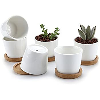 Amazon 35 inch white ceramic succulent plant pots small t4u 25 inch ceramic white round simple design succulent plant potcactus plant pot flower pot with free bamboo traycontainerplanter white package 1 pack mightylinksfo