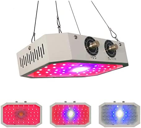 1000W LED Grow Light IP65 Waterproof 1-10V Dimmable Full Spectrum Growing Light Bulb with UL Approved Meanwell Driver for Greenhouse Plants Growth Dimmer Included