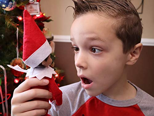 Don't Touch Elf on the Shelf!