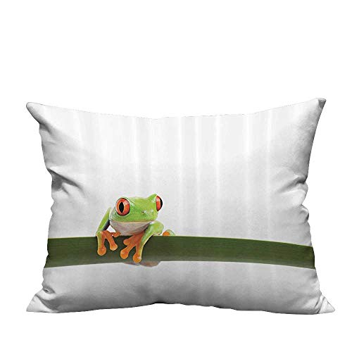 (YouXianHome Household Pillowcase Red Eyed Tree Frog Perches Slim Leaf Tropic Rainforest Animal Wild Life Perfect for Travel(Double-Sided Printing) 13x17.5 inch)