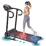 Holarose Universal Electric Folding Treadmill,1100W Motorized Running Machine,Exercise Equipment Household Jogging Machine