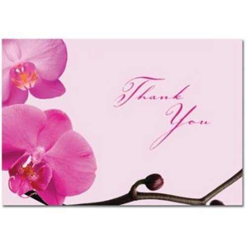 Pink Orchid Thank You Note Cards and Envelopes - 48