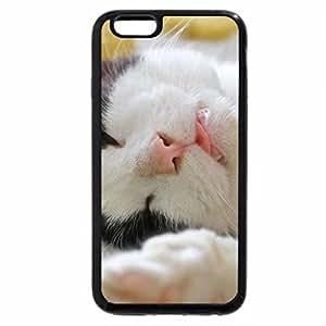 iPhone 6S / iPhone 6 Case (Black) Cat