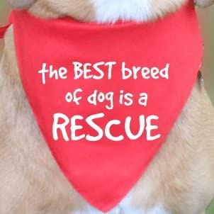Extra Small ie Chihuahua The best breed of dog is a rescue Purple, Teeny dog bandana
