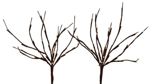 Outdoor Willow Branch Lights in Florida - 7