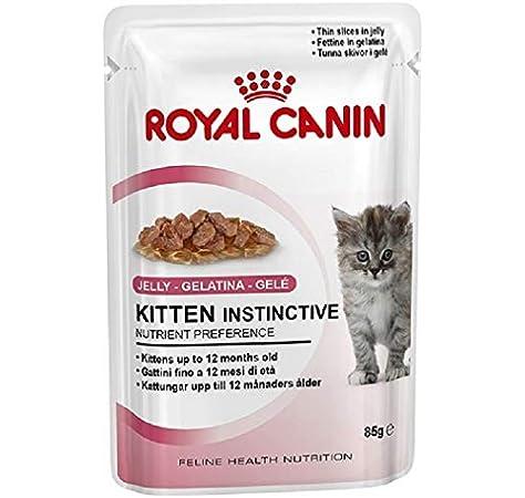 ROYAL CANIN Kitten Instinctive, Comida para Gatos - Paquete de 12 ...