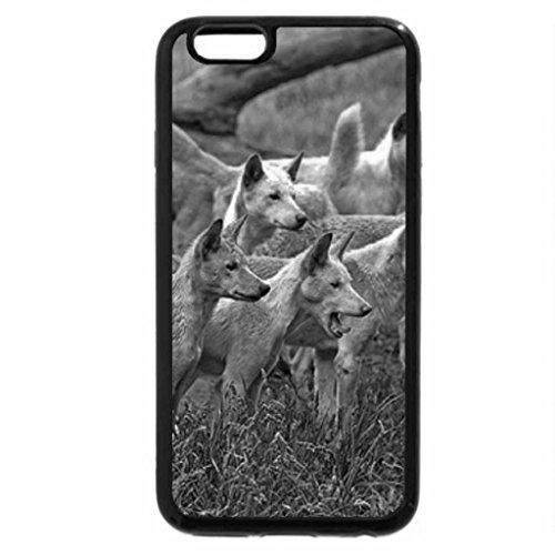iPhone 6S Plus Case, iPhone 6 Plus Case (Black & White) - Our dogs