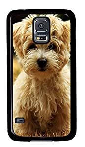 brown havanese puppies Custom Back Phone Case for Samsung Galaxy S5 PC Material Black -1210097