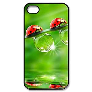 CHSY CASE DIY Design Ladybug Pattern Phone Case For Iphone 4/4s