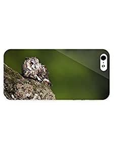 3d Full Wrap Case for iPhone 6 plus 5.5 Animal Cute Owl On The Rock