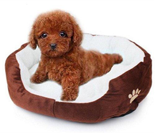 LAAT Cama para Mascotas Cama de Perro Cama de Dormir para Gatos Cama de Perro de Forma Redonda - Gris: Amazon.es: Productos para mascotas
