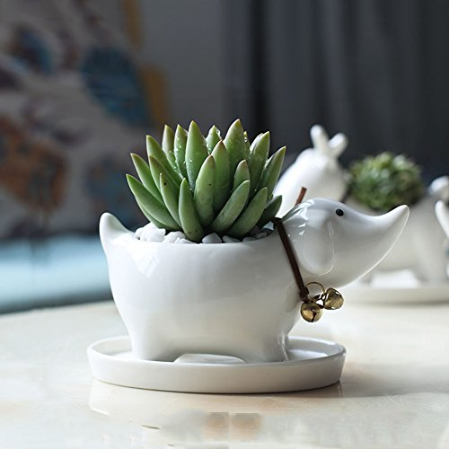 YOURNELO Simple Ceramic Whiteware Plant Flower Pot for sale  Delivered anywhere in USA