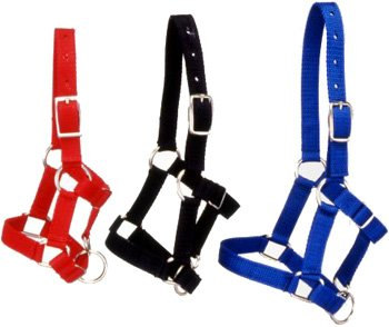 Tough 1 Miniature Nylon Halter, Red, Large ()