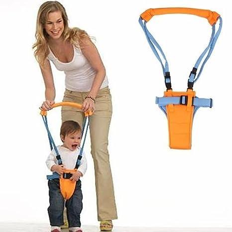 Amazon.com: Xhan bebé Walker – aprender a caminar Asistente ...