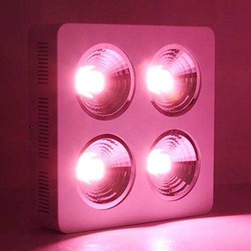 800w LED Grow Light Full Spectrum COB Reflector Lighting for Indoor Plant Veg Flower