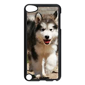 Stylish Case for Ipod Touch 5 - Staying adorable sled dogs ( WKK-R-528102 )