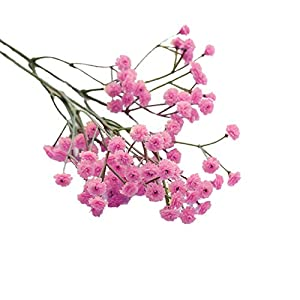 Yamart Artificial Silk Fake Flowers Baby's Breath Floral Table Centerpieces Arrangements Decor Wedding Home Kitchen Office Windowsill Decorations 3