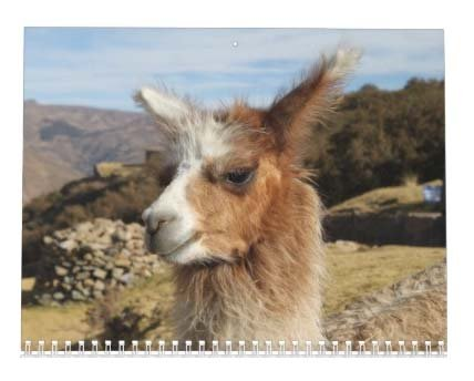 Llama Calendar - Best South America Images in Snow Capped Andes Mountains of Bolivia and Peru Photo #3