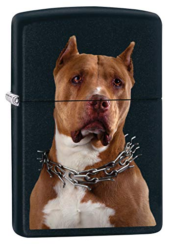 Zippo Lighter: Pit Bull with Collar - Black Matte 79845