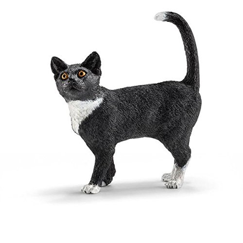 Buy cat toys 2015