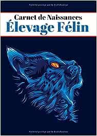CARNET DE NAISSANCES D'ÉLEVAGE FÉLIN: Carnet pour Éleveurs Professionnels ou Particuliers, 8 chatons par portée/Journal de bord pour chats/ 141Pages (21X29.7cm) A4