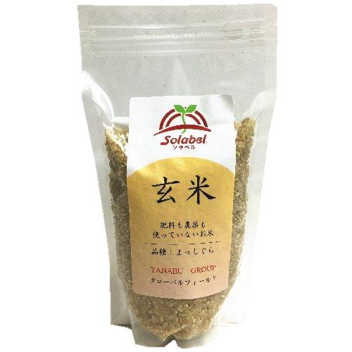 木村秋則氏監修 無肥料 無農薬 自然栽培米 青森県産 まっしぐら 玄米 300g