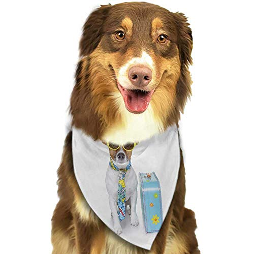 Cute pet Scarf Dog Traveler Funny Dog Dressed as a Tourist with Hat Glasses Necktie and a Floral Suitcase W27.5 xL12 Scarf for Small and Medium Dogs and Cats ()