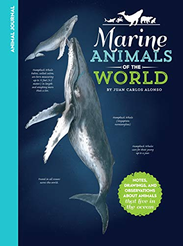 Animals Activity Book Sea (Animal Journal: Marine Animals of the World: Notes, drawings, and observations about animals that live in the ocean)