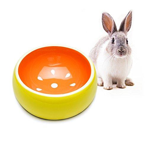 Mkono No-Tip Ceramic Rabbit Food Bowl Feeder for Guinea Pig Hamster Chinchilla, Grapefruit