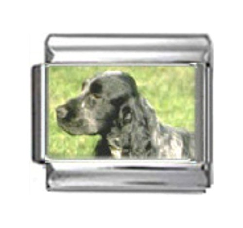 Stylysh Charms Cocker Spaniel Dog Photo Italian 9mm Link DG157 ()