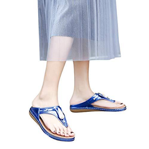 Women's Flip Flop Wedge Sandal Comfort Open Toe Thong Slid Slippers Summer Beach Travel Sandal Shoes Blue ()