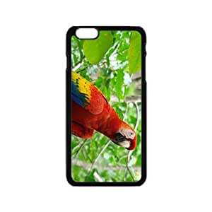 linfenglinCute Acutilingual Parrot Hight Quality Plastic Case for Iphone 6