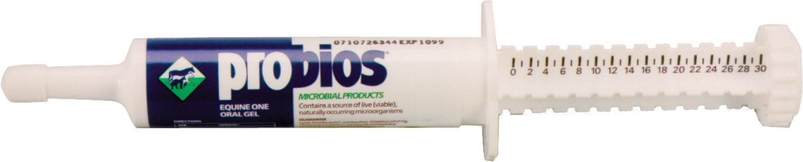 Probios® Equine One Oral Gel 30cc