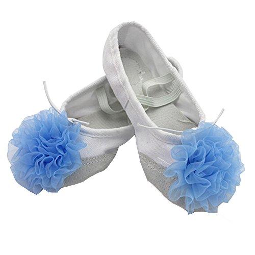 lisianthus002Little Kid Ballett Blume Schuhe Split Sole, Mehrfarbig - A - Größe: 32 EU