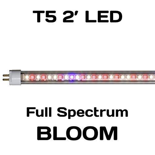 Bloom Light (Sunlight Supply AgroLED iSunlight Bloom T5 LED Lamp — 21 Watt, 2ft.L, 5500K)