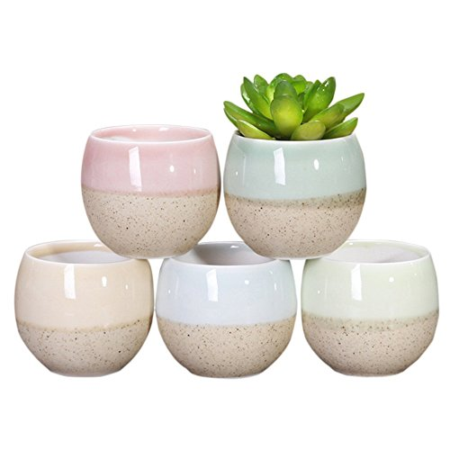 Cheap LOHOME Flourished Oval Planter Favor Ceramics Flower Pot for Home Office Desk Garden Decoration Set of 5 (Plant Not Include) (with Drainage Hole)