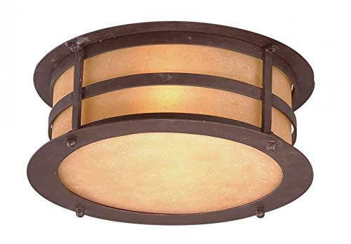 (Troy Lighting Aspen 2-Light Outdoor Flush Mount - Natural Bronze Finish with Seeded Amber Etched Glass by Troy)