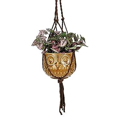 Nature's Garden Hanging Owl Pot, Golden Tan