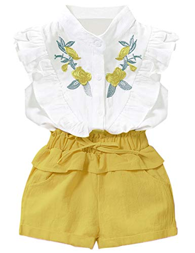 Toddler Baby Girl Outfits 2Pcs Ruffle Print T-Shirt Tops and Shorts Pants Clothes Sets 5-6T