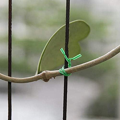 Garten-Bindung Mit Schutztasche Aus Kunststoff Drahtbindelinie Kletterpflanzen Kabel Blume Cucumber Grape Rattan-Halter (Color : 50M)