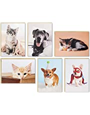 Hallmark Blank Cards Assortment, Dog and Cat Photos (36 Assorted Note Cards with Envelopes) (5STZ1061)