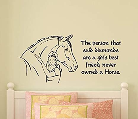 Amazon.com: Diuangfoong Girls Bedroom Horse Wall Decal Pony ...