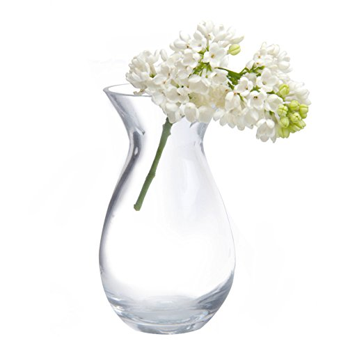 Chive - George Shape 2, Unique Clear Glass Flower Vase, Small and Elegant Oval Bud Vase, Decorative Floral Vase for Home Decor Office Place Settings, Bulk Set of 6 (Vases Assorted)