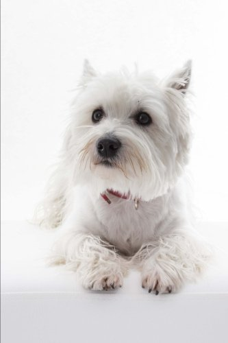 The West Highland White Terrier Dog Journal (Westie): 150 page lined notebook/diary