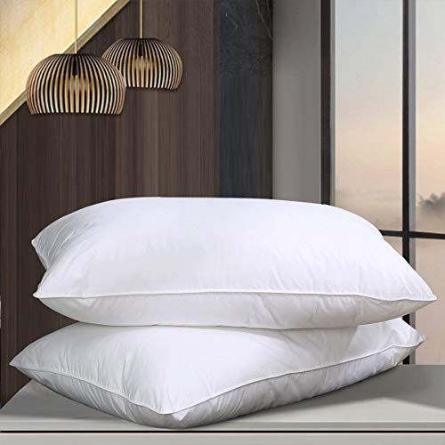 NP Goose Down Alternative Pillows (2 Pack,Queen Soft) 100% Egyptian Cotton with Microfiber Filling Sleep Pillow,Washable,Hypoallergenic