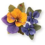 Sizzix Thinlits 12-Pack Die Cut Set for Scrapbooking, Flower Pansy/Violet by Susan Tierney-Cockburn
