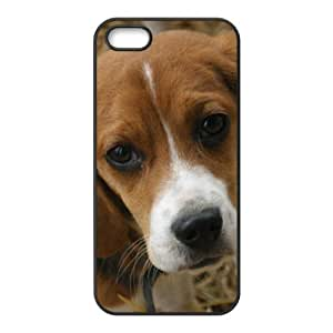 dog Phone Case for iPhone 5S Case by Maris's Diary